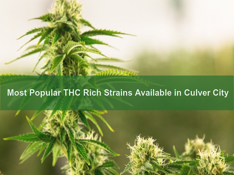 THC Strains in Culver City