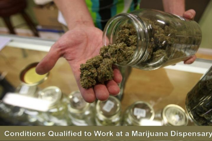 Work at marijuana dispensary
