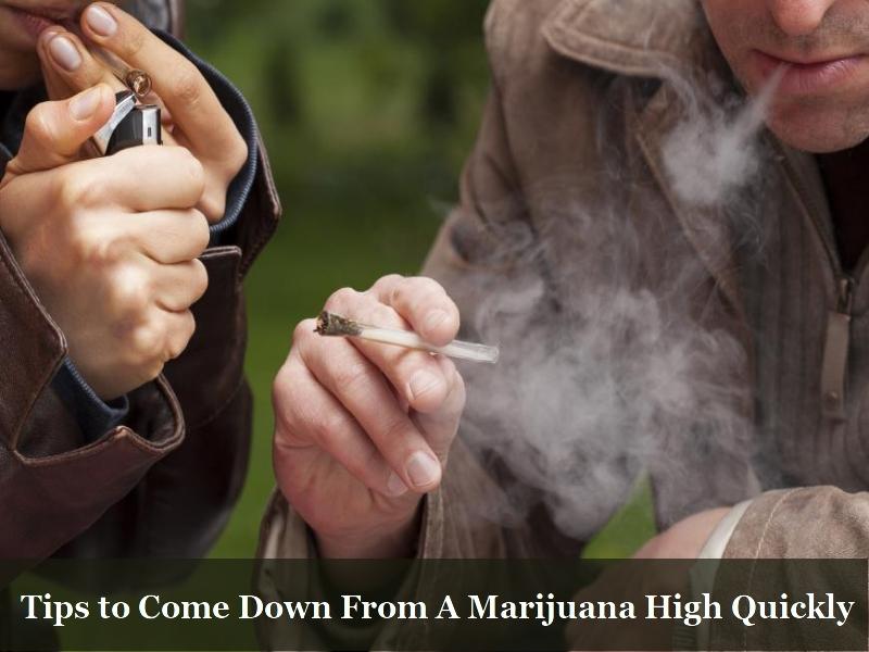 Tips to come down marijuana high